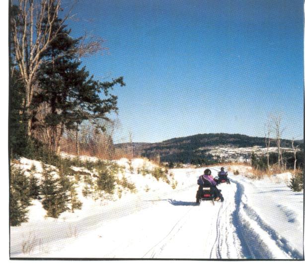 snowmobilebrochure.jpg